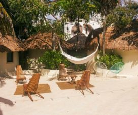 Pet Friendly Isabella Boutique Hotel Playa del Carmen