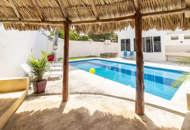 Pet Friendly Two Palms Hotel Cancún