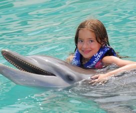 Qué Actividades Hacer en Cancún con Niños