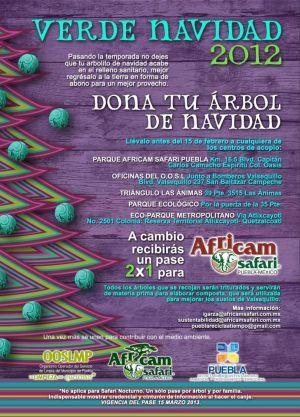 Recicla tu árbol Verde Navidad 2012