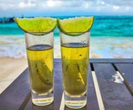 Ruta Definitiva por México: El Arte del Tequila y la Música Bajo el Sol Mexicano