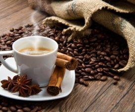 Sabor a México en cada Taza de Café