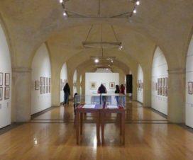 San Pedro Museo de Arte Puebla Fotos