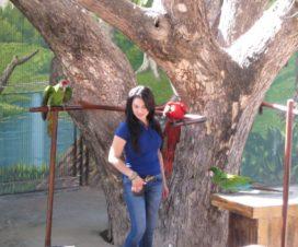 Show de Aves en El Acuario de Mazatlán 9