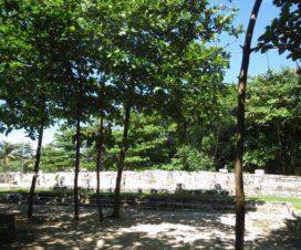 Sitio Arqueológico de San Miguelito Cancún