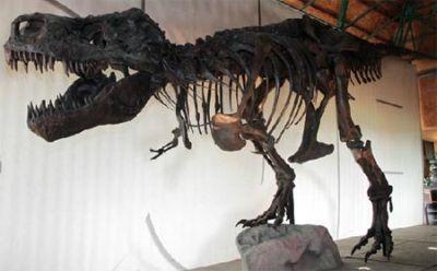 Tiranosaurio Rex en Africam Safari Puebla