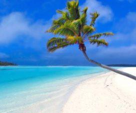 Tours y Actividades Imperdibles en Cancún