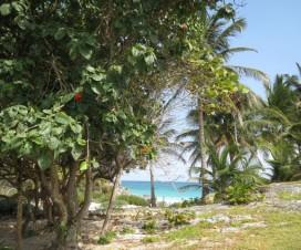 Tulum Riviera Maya El Paraíso de México