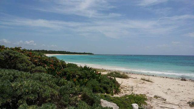 Xcacel Xcacelito Una Playa de Ensueño en la Riviera Maya