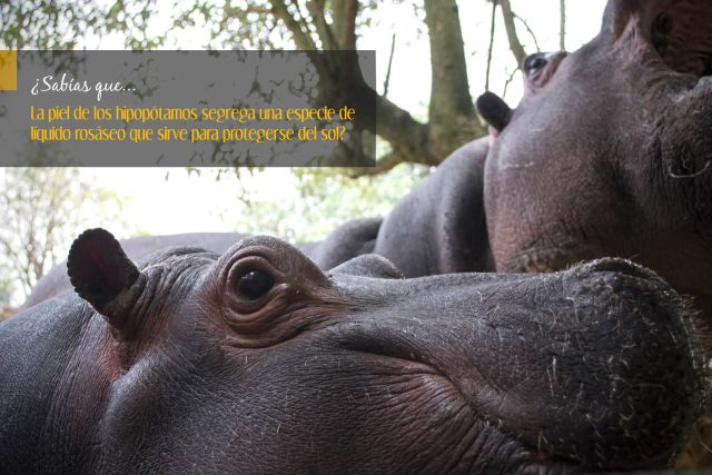 Zoológico Parque Ecológico Zacango
